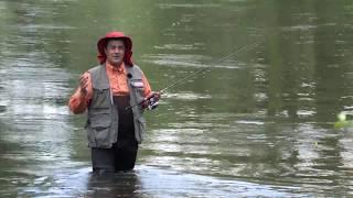 Рыболов привез домой 9 рыбешек четверть