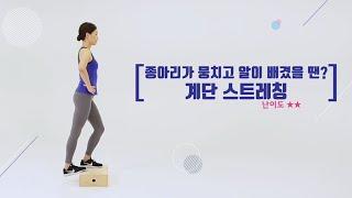 관련 동영상