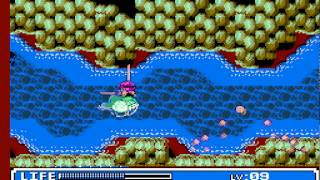 NES Crystalis in 40:40.43 by TheAxeMan [with author annotations]