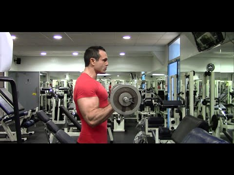 Les muscles bicéphale et tr±khglavaya les muscles