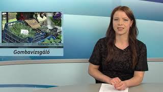 Szentendre Ma / TV Szentendre / 2020.06.01.