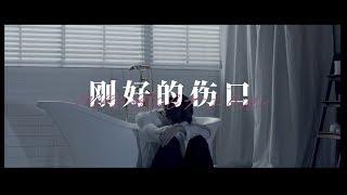 林彥俊Evan Lin《剛好的傷口Imperfect love》Official Music Video