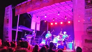 I've Been Waiting - Matthew Sweet at the 2017 Haverford Music Festival