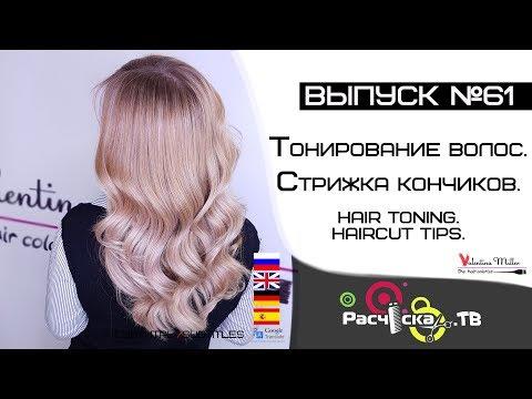 Die Pferdestärke das Shampoo vom Haarausfall die Rezensionen der Ärzte