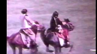 موزیک ویدیو کردستان
