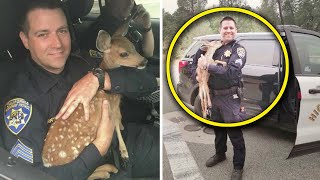 Real Life Heroes Who Selflessly Risked Their Lives To Save Animals