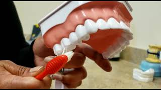Don't you want a healthy healthy smile. Check these effective brushing techniques