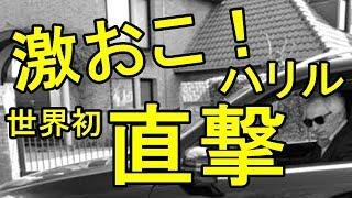 サッカー日本代表ハリルホジッチ激おこ!「けしからん!日本に行く、そこで真実を話す!」2chすずめ
