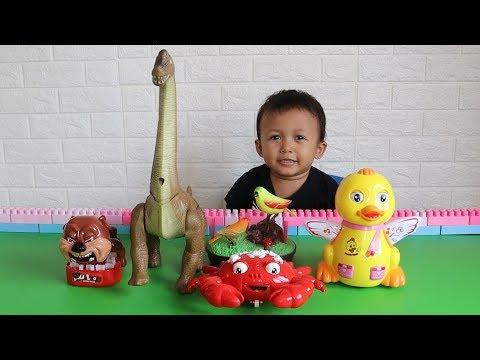 Mainan Dinousaurus, Bebek, Kepiting, Burung dan Anjing - Belajar dan bermain