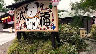 櫻木神社千葉県野田市ご朱印
