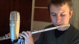 Let her go - Passenger [Flute cover]