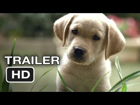 Quill The Life Of A Guide Dog Official Trailer #1 (2012) HD Movie