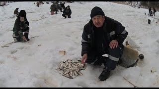 Экспедиция по окресностям Усть - Илимска с рыбалкой на ельца