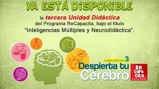 Inteligencias Múltiples y Neurodidáctica