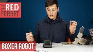 The Tiny Boxer A.I.  Robot is CRAZY!