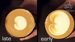 Sunergos Milk Training Video: Learn Milk Science, Steaming, and Latte Art