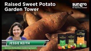 Raised Sweet Potato Garden Tower DIY