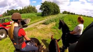 Outdoor horse ride in Belgium... GoPro FPV