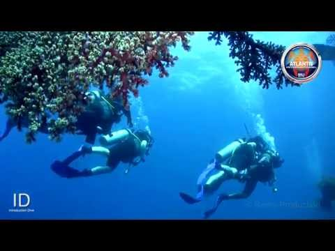 Introduction Dive by Atlantis International Bali