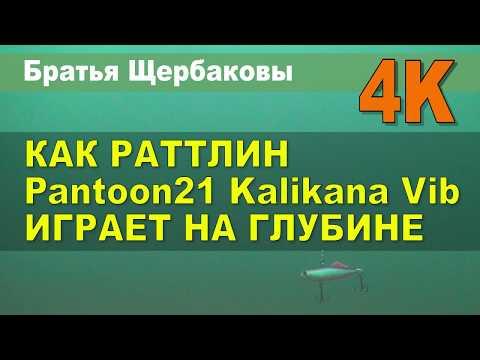 Video youtybe idx6FU1_5DM-0