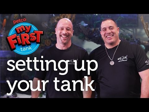 Petco and Animal Planet's Tanked Present: My First Tank – Setting Up Your Tank