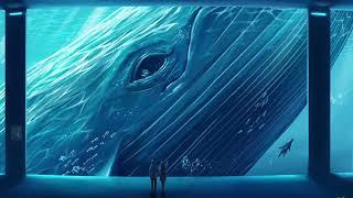 The 52 Hertz whale sound