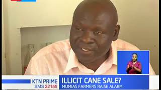 Sugarcane farmers in Mumias raise alarm over what they term as illicit sale of sugarcane
