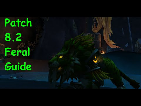 Download How To Play Druid Video 3GP Mp4 FLV HD Mp3 Download