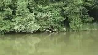 preview picture of video 'Vodná nádrž Bukovec'