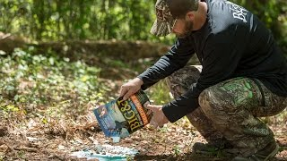 Summer Deer Feed and Deer Minerals | Michael Waddell's Tips For Big&J Attractants