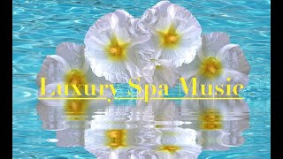 ~Luxury Spa Music~Relaxing Guitar Music~Stress Relief Music~Meditation Music