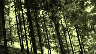 Falkenbach - Runes Shall You Know