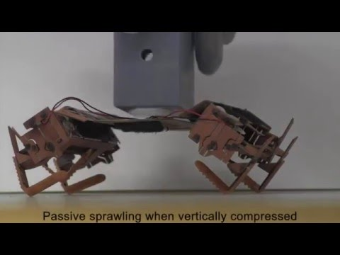 Cockroach-inspired robot with locomotion by body-friction legged crawling