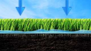 Be Water Smart - Lawn Watering Tips