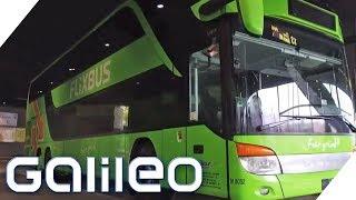 Flixbus - Wie wurde das Start-up so erfolgreich?   Galileo   ProSieben