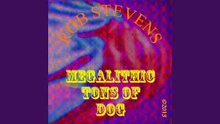 ROB STEVENS – YES