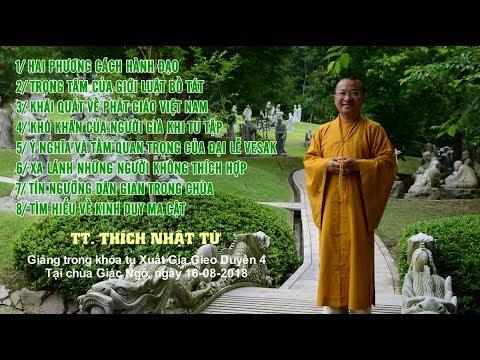 Vấn đáp: Hai phương cách hành đạo, trọng tâm của giới luật bồ tát - TT. Thích Nhật Từ