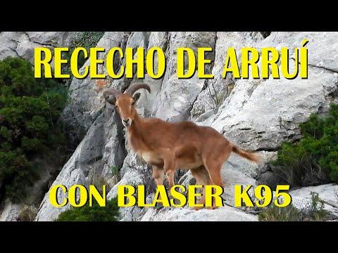 Caza de montaña: tras el arruí con el Blaser K95