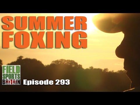 Fieldsports Britain – Summer Foxing