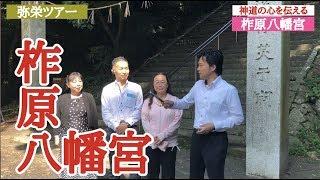 柞原八幡宮大分県神道の心を伝える神社巡り