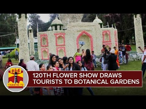 120th-Flower-Show-draws-Tourists-to-Ooty-Botanical-Gardens--Thanthi-TV