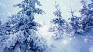 Winter Storm White Noise   Sleep, Study or Focus with Wind & Snowstorm Sounds   10 Hours
