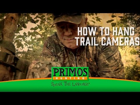 How to Hang Trail Cameras video thumbnail