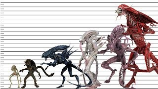 Top 10 Largest Xenomorphs