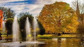 Beautiful Autumn Colours In England...