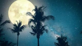 Get To Sleep Fast & Easy! ➤ Healing SLEEP Music | The Deepest Sleep | 432Hz Sleeping Music