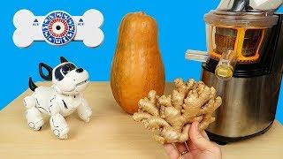 Сок из Имбиря и Тыквы! Робот щенок PupBo для Насти на Новый Год! alex boyko
