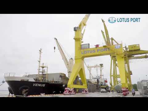 Công tác xếp dỡ tại cảng Lotus