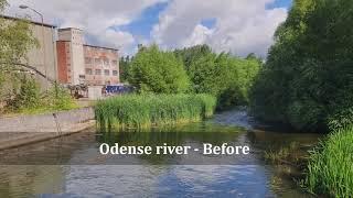 UC Life Denmark – Midterm video
