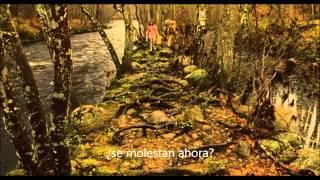 Foals - Everytime (subtitulada)